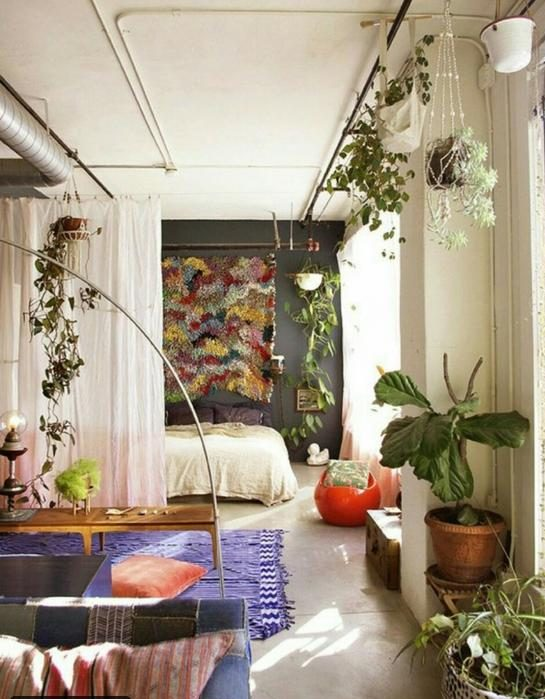 ديكور النباتات