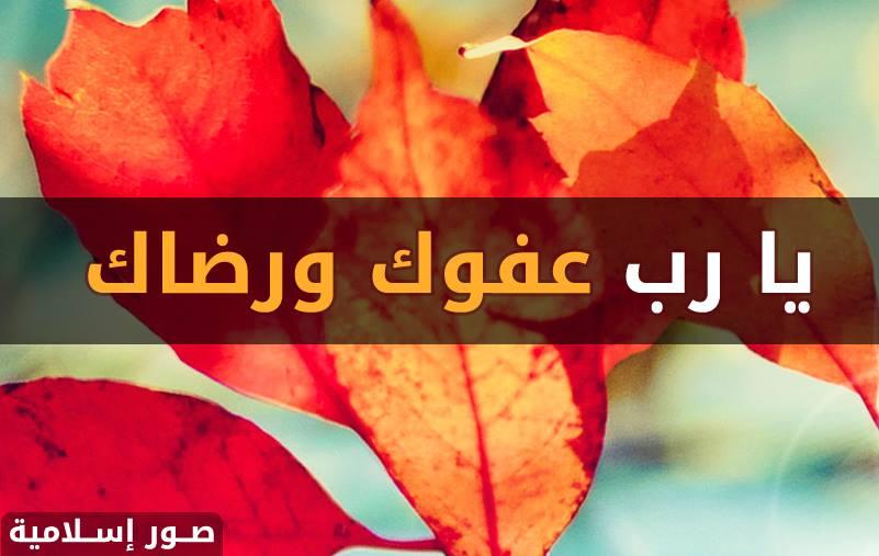 صورة اسلامية يا رب عفوك ورضاك