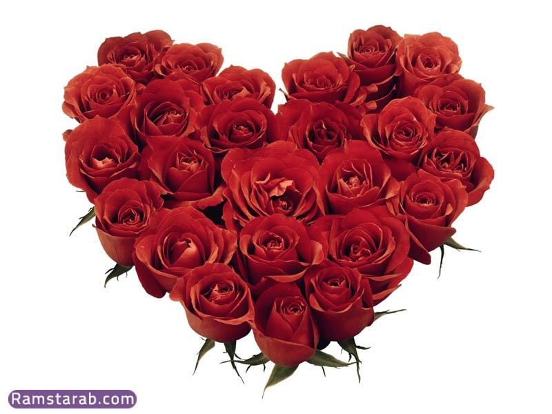 صورة وردة رومانسية