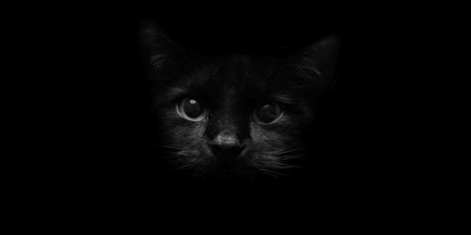 خلفيات سوداء