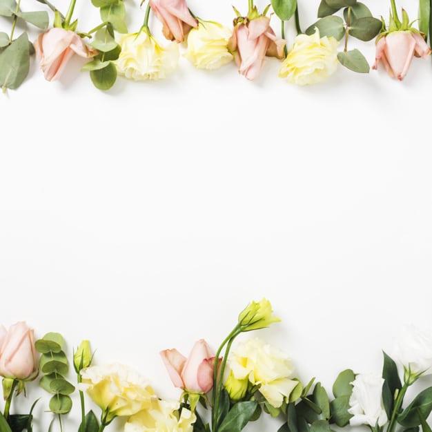 زهور hd