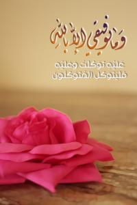 صور ايات قرانية 13