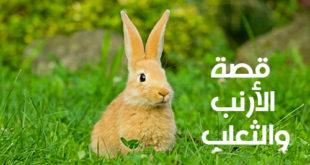 قصة الأرنب والثعلب