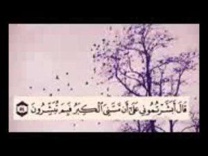 حالات ايات قرآنية