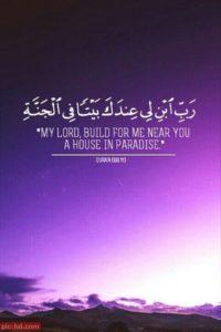 حالات ايات قرآنية15