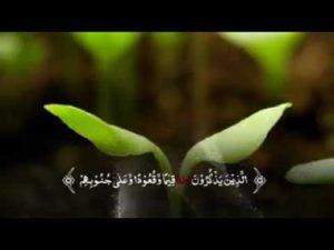 حالات ايات قرآنية17