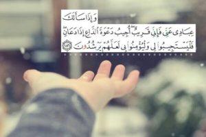 حالات ايات قرآنية2