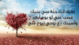 صور رسائل حب13