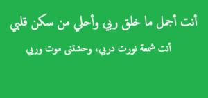 صور رسائل حب28