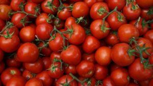 صور رمزية طماطم12