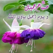 صور صباح الخير27
