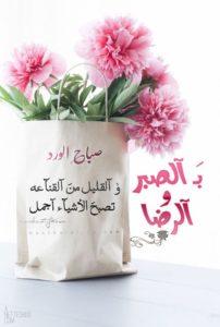 صور صباح الخير3