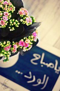 صور صباح الخير33