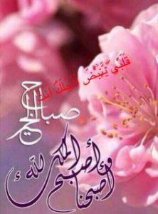 صور صباح الخير4