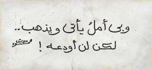 أشعار محمود درويش29