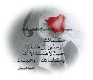 أشعار محمود درويش27