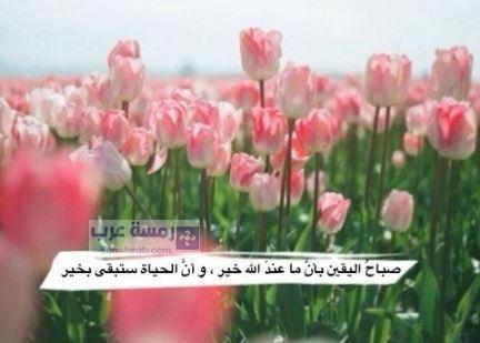 صورة صباح الخير جميلة