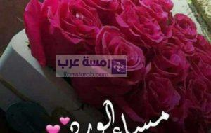 صور مساء الورد37