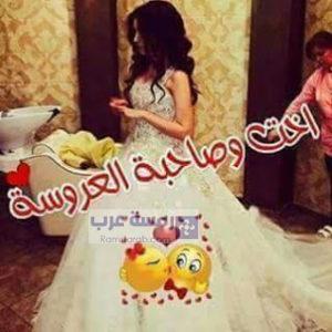 صور صاحبة العروسة10