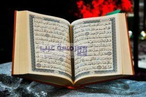 صور قرآن18