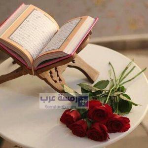 صور قرآن25