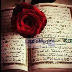 صور قرآن5