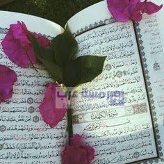 صور قرآن9