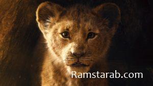 صور حيوانات31