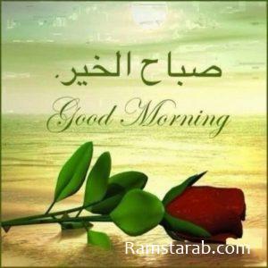 صور صباح الخير حبيبتي