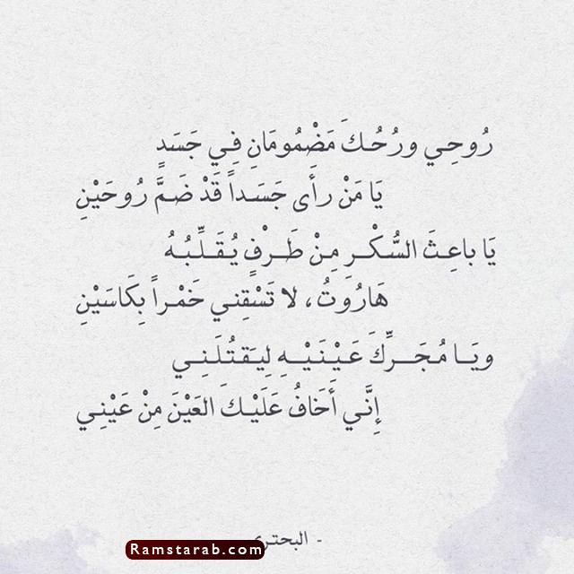 قصائد مدح18