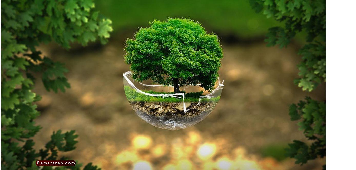 صور عن البيئة21