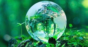 صور عن البيئة7