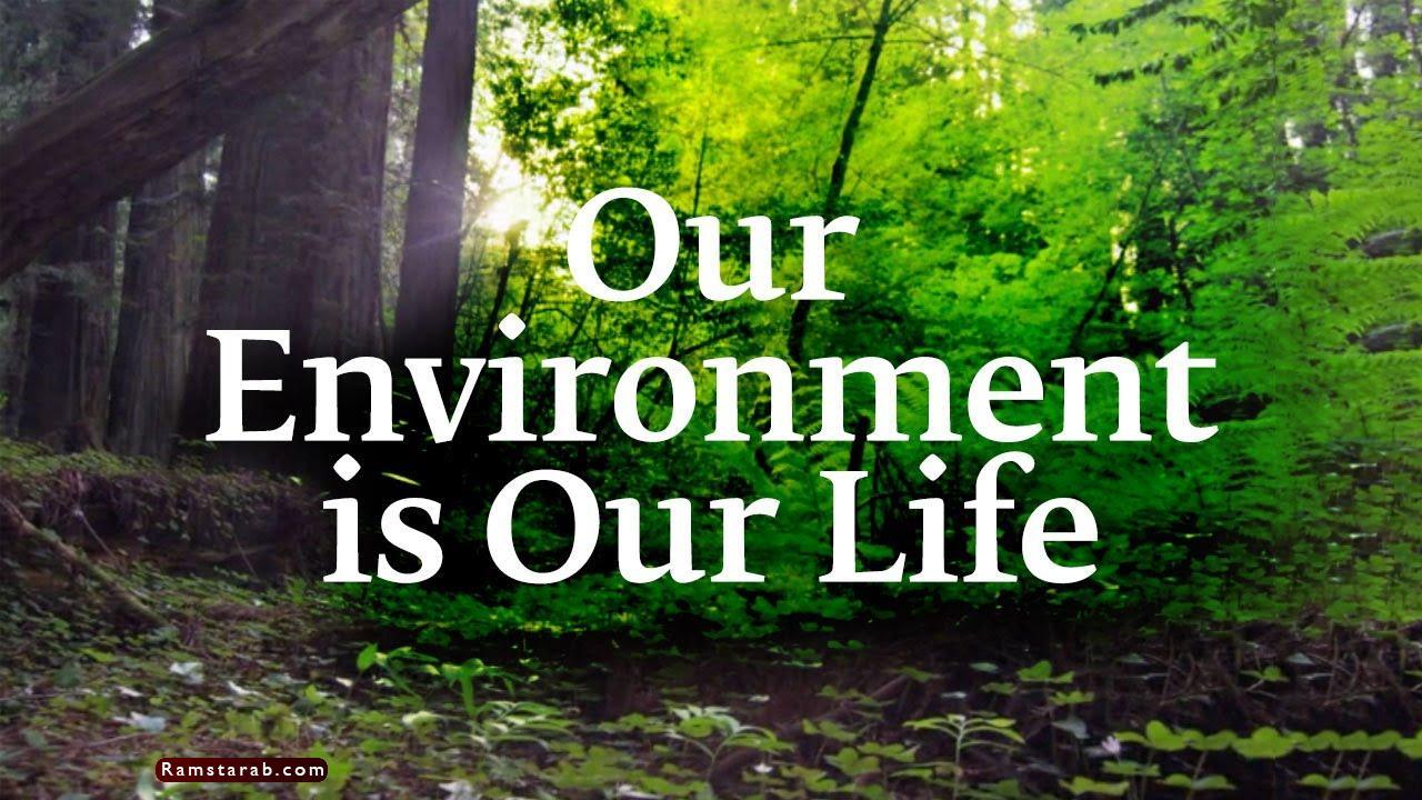 صور عن البيئة8