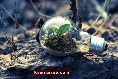 صور عن البيئة5
