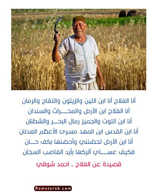 قصيدة عن الفلاح احمد شوقي