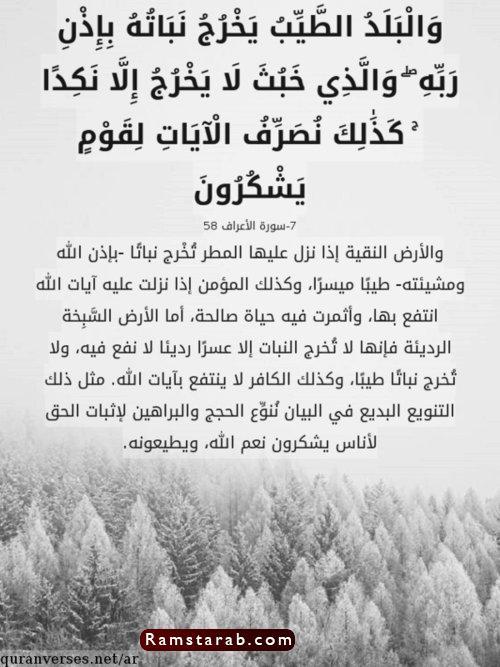 آيات قرآنية19