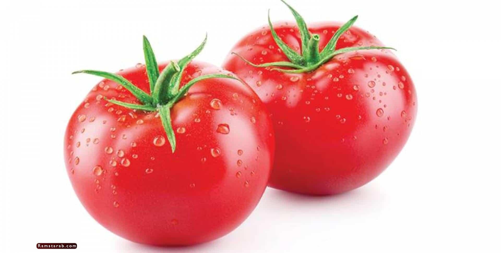 طماطم4