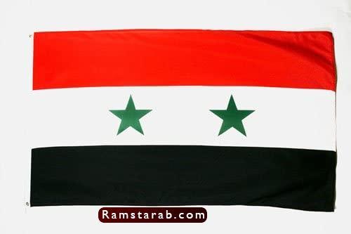 علم سوريا8