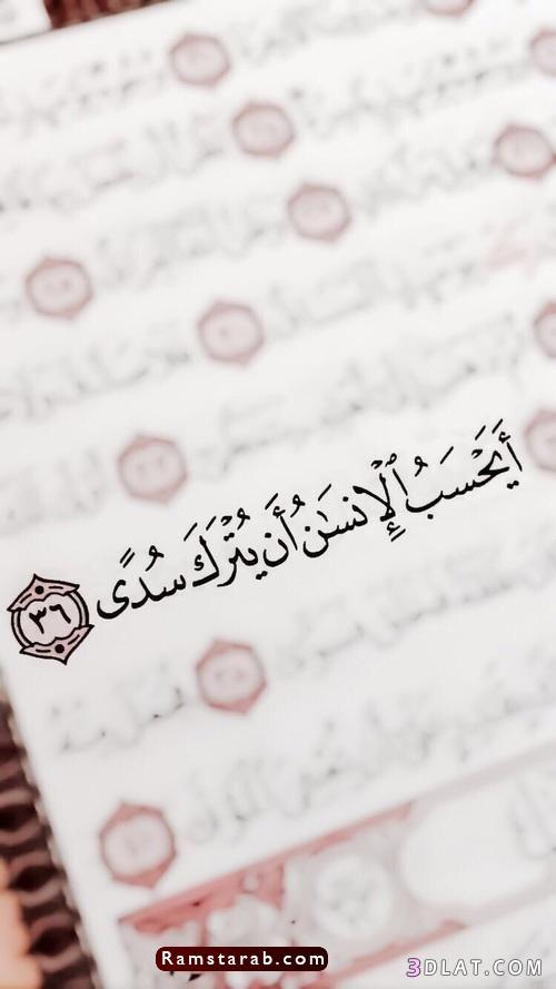 آيات قرآنية23