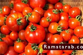 طماطم11
