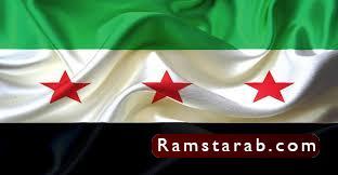 علم سوريا20