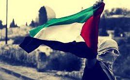 علم فلسطين17