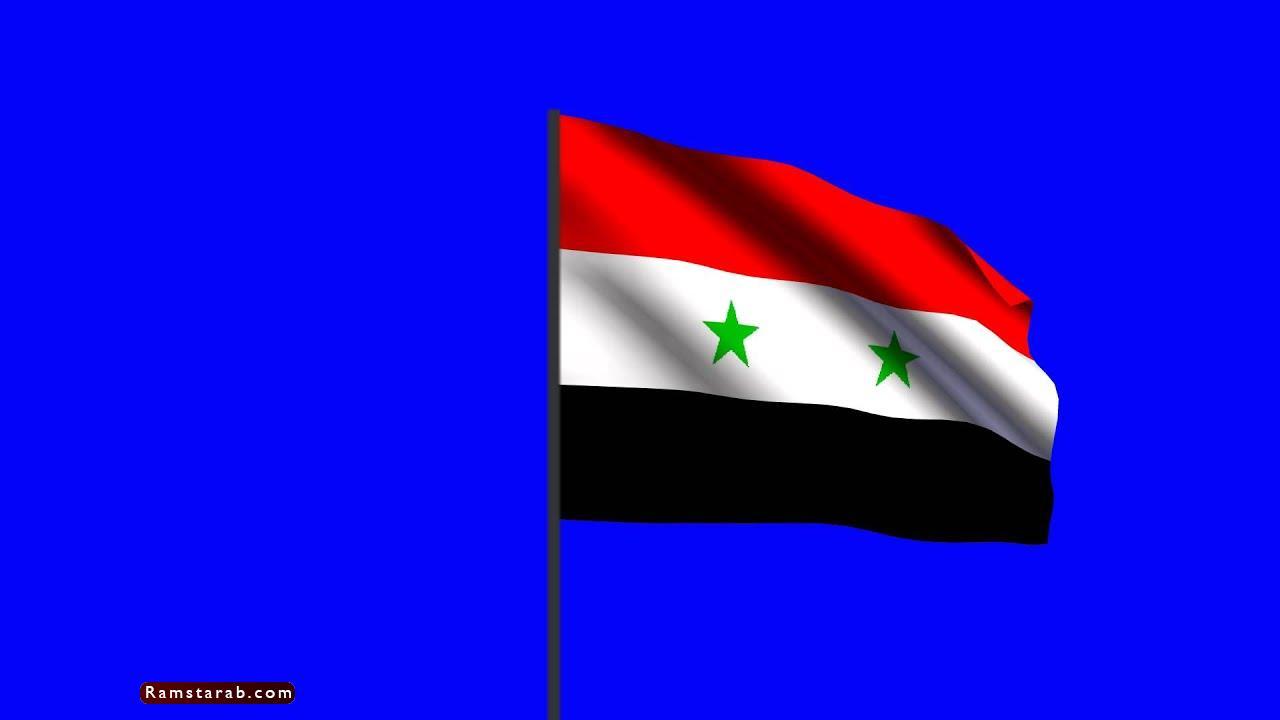 علم سوريا28