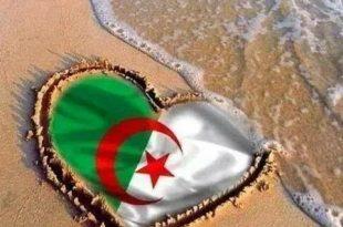 علم الجزائر 3