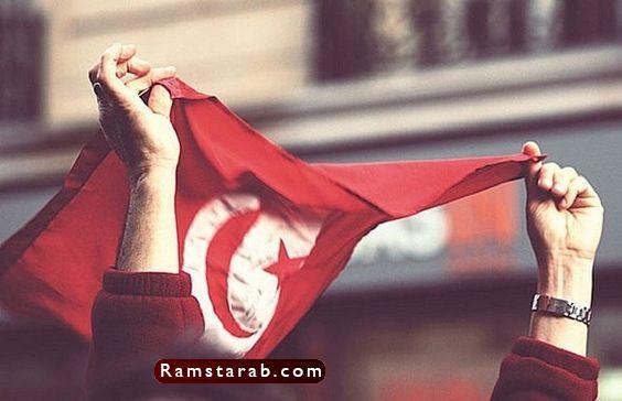 علم تونس3