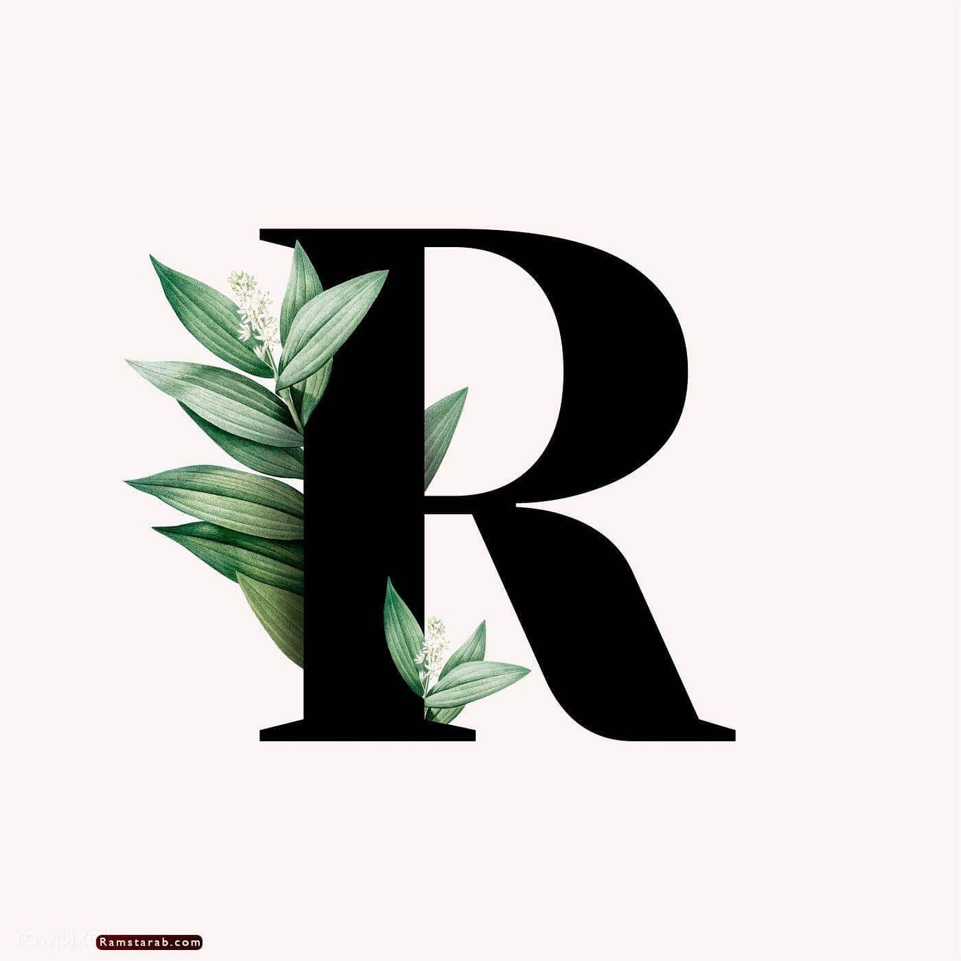 صور حرف r16