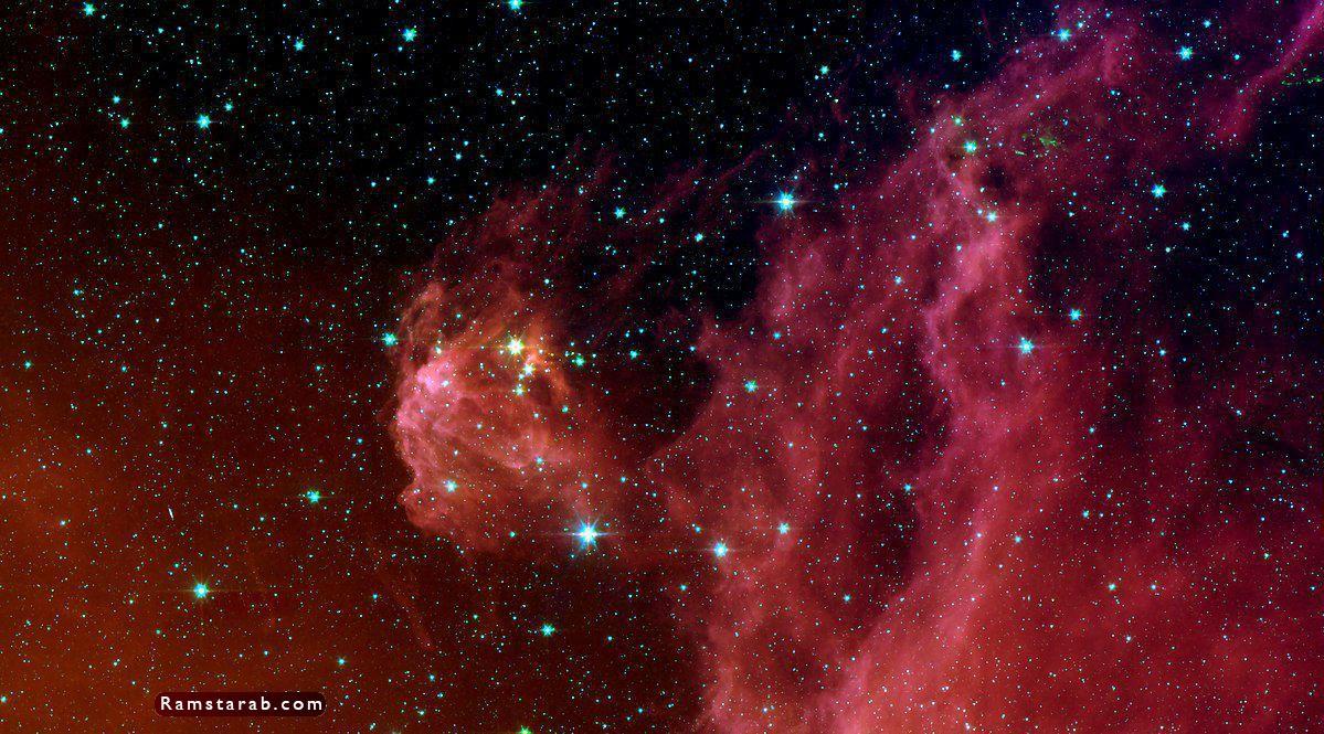 صور نجوم29