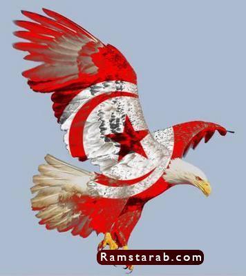 علم تونس27