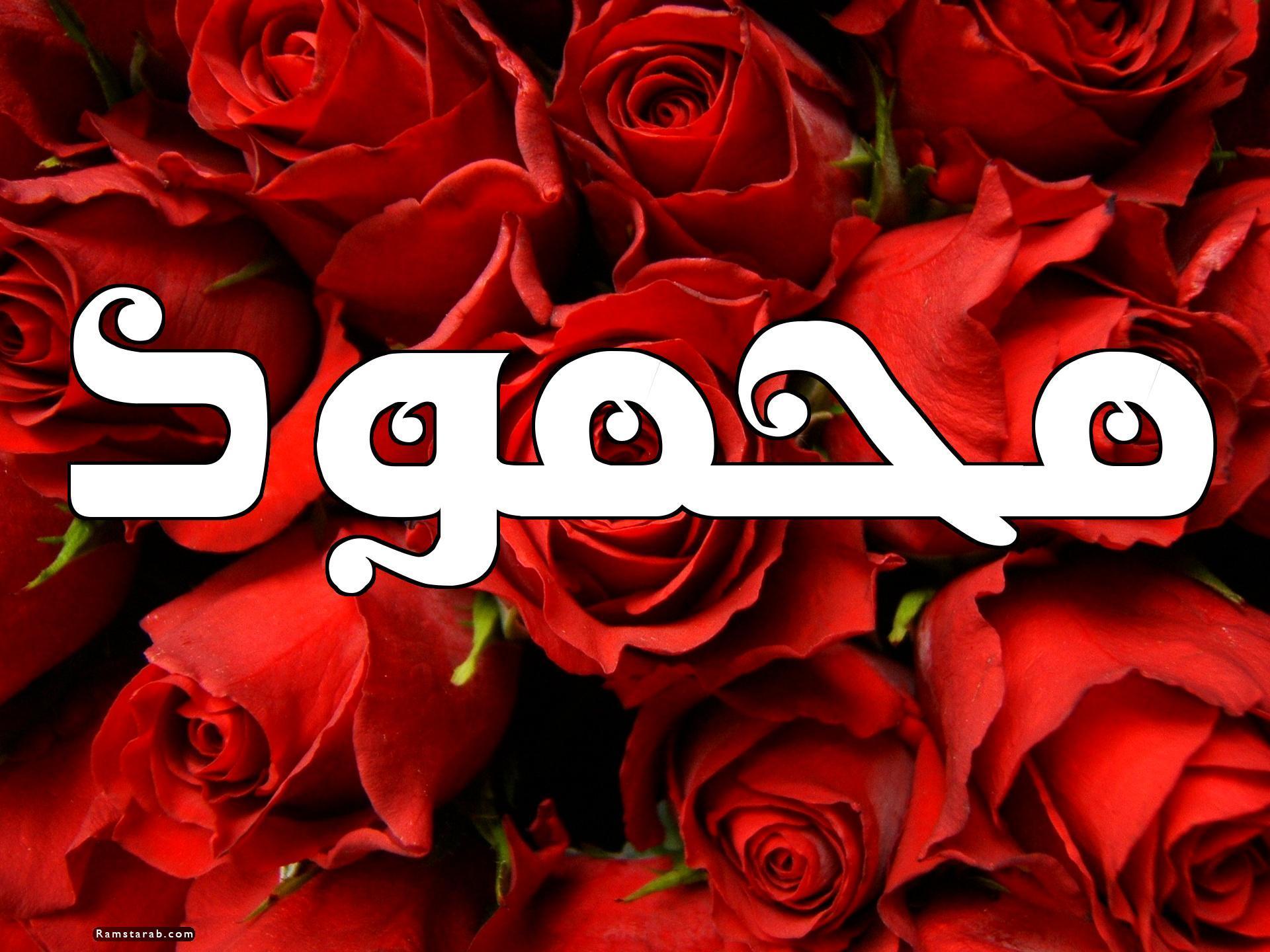 صور اسم محمود15