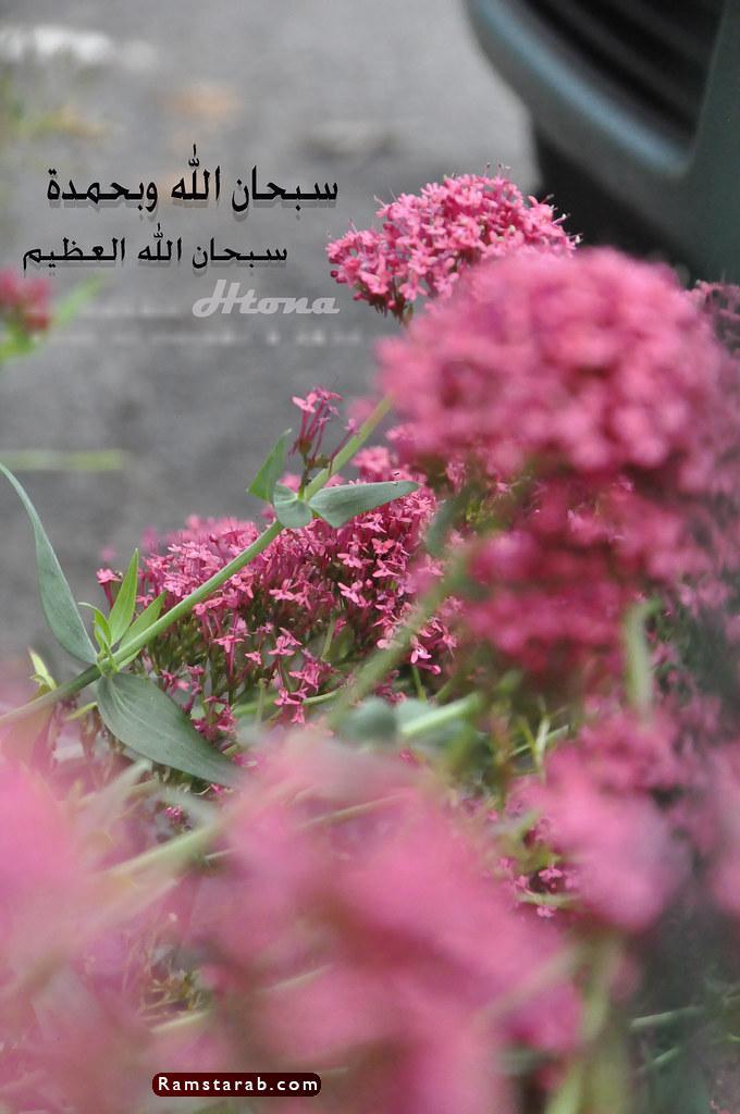 صور سبحان الله العظيم16